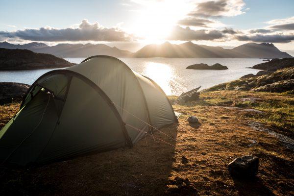 wildkamperen, noorwegen, europa