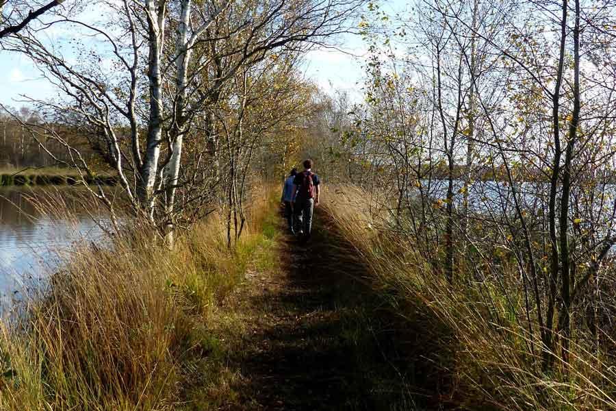 Nationaal Park, De Groote Peel, carnaval, staatsbosbeheer, stilte, limburg, brabant, wandelen