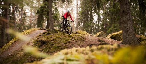 mountainbiken, ardennen, top 5, mtb routes