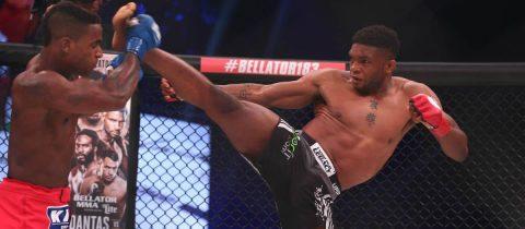 Paul Daley MMA