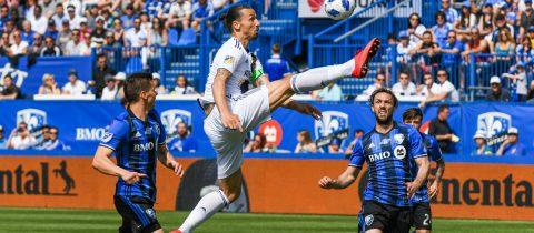 Zlatan Ibrahimovic rood