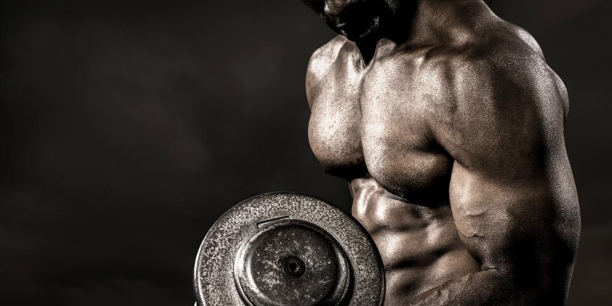 eiwitten voor spieren