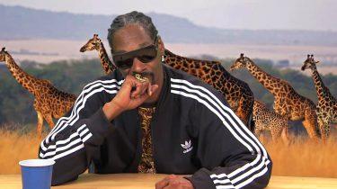 Plizzanet Earth Snoop Dogg