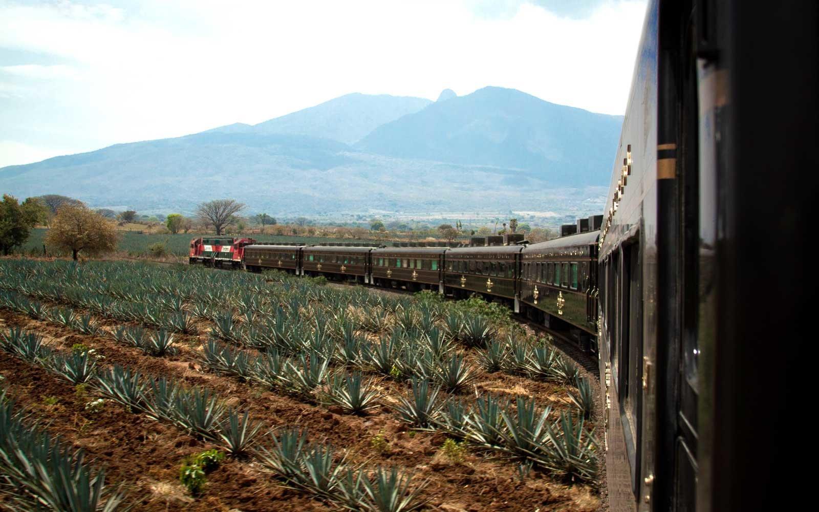 tequila trein