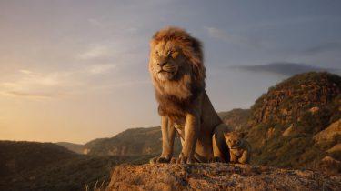 The Lion King Disney