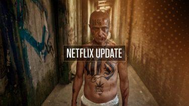 Netflix Update week 20