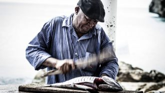 vis, eten, gezondheidsvoordelen, afvallen
