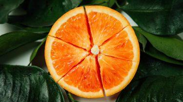 fruitvliegjes, huis, tips, zo kom je ervan af, bestrijden