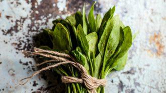 spinazie, afvallen, gezondste, groenten