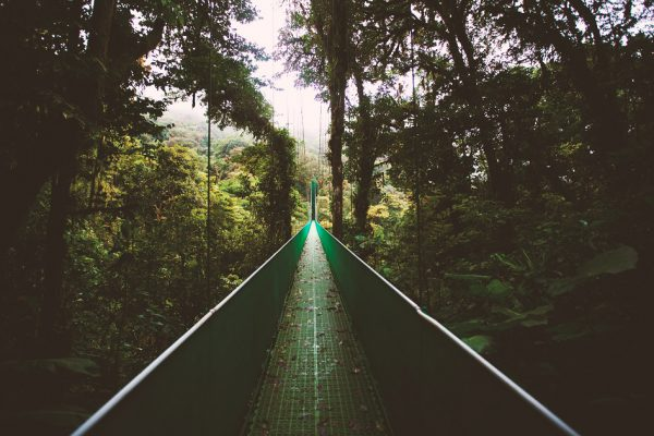 Monteverde Cloud Forest Reserve, nationale parken, costa rica