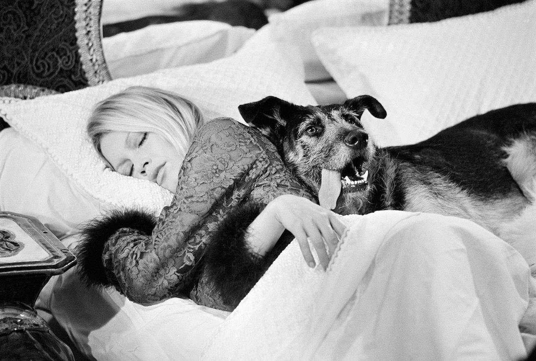 Brigitte Bardot, Terry O'Neill
