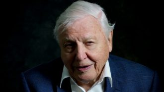 david attenborough, a life on our planet, film, trailer, netflix