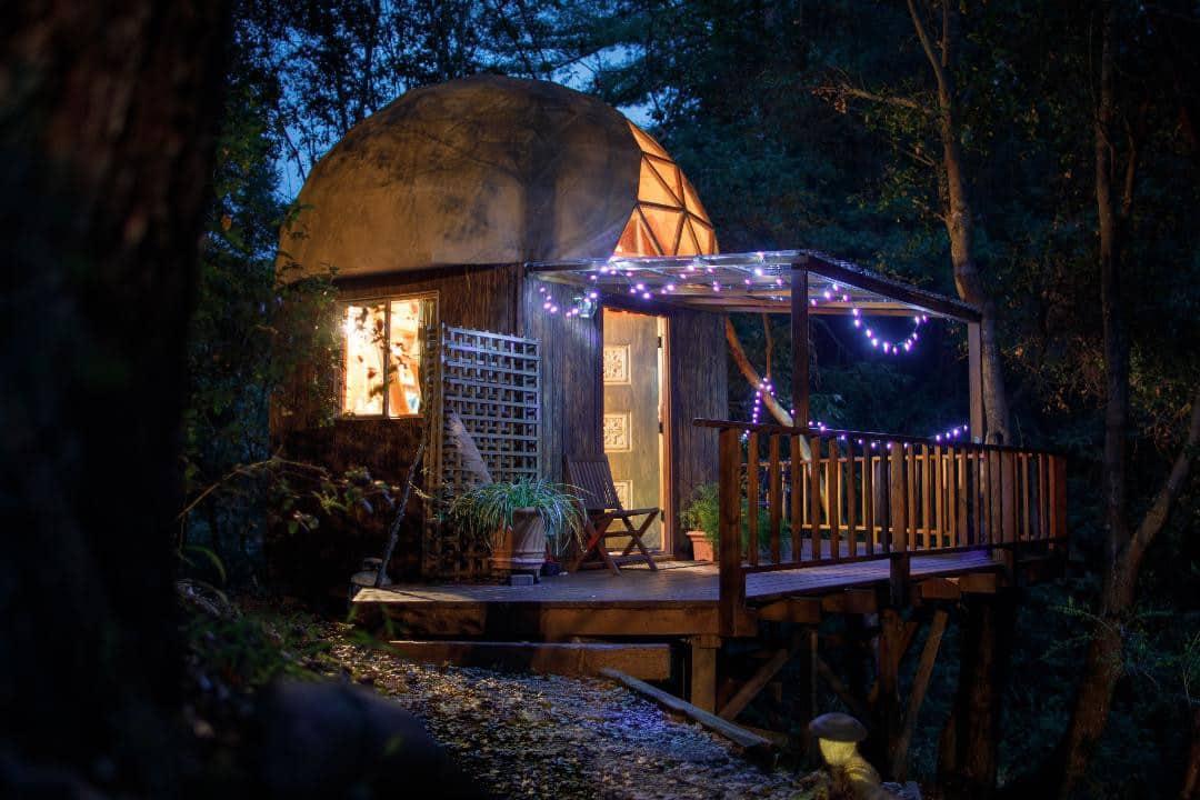 wereld, hut, bos