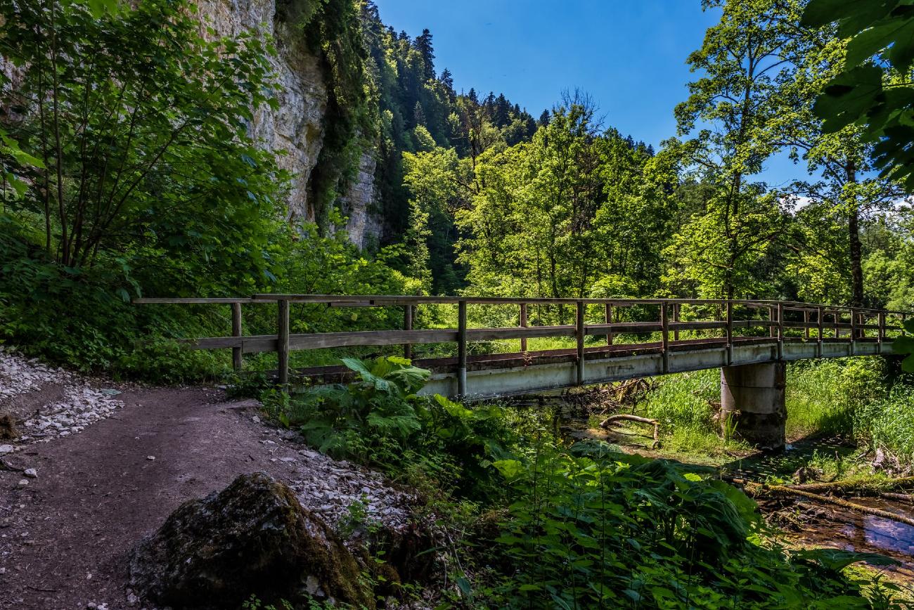 Schluchtensteig, zwarte woud, wandelen, wandelroutes, duitsland