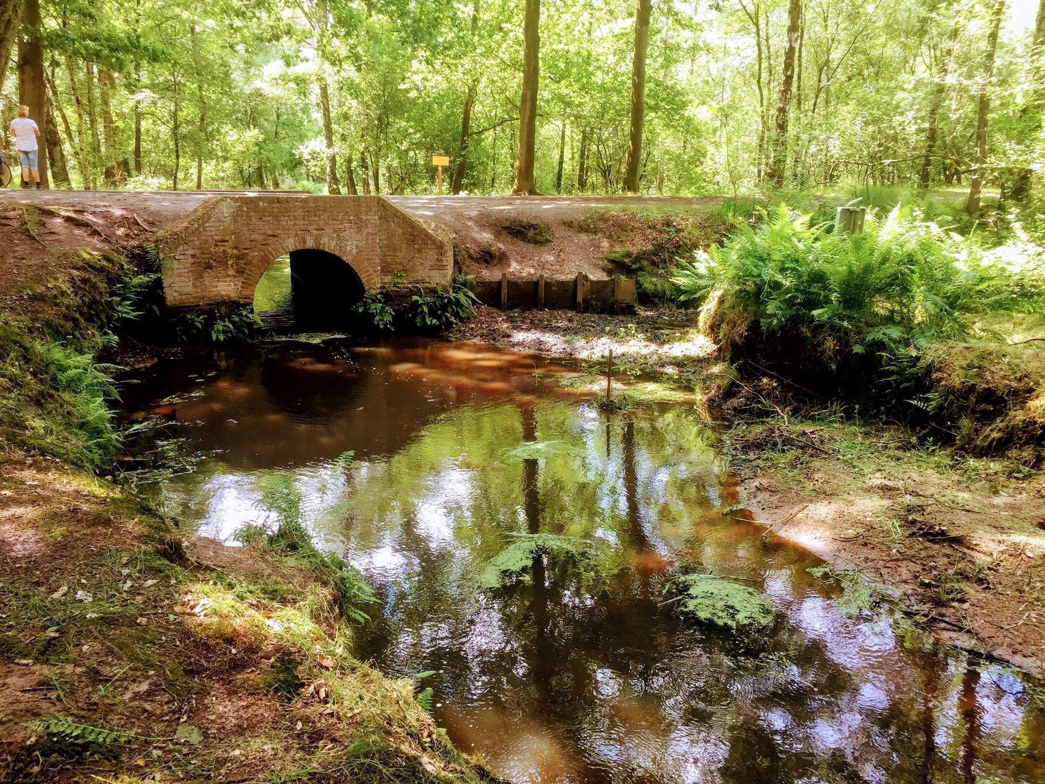 wandelen, wandelroutes, social distancing, nederland